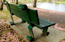 Support-Bench