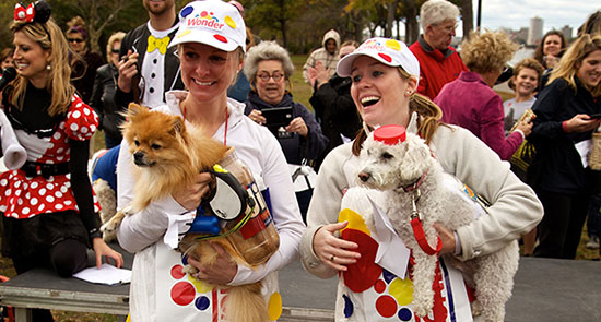 boston canine promenade